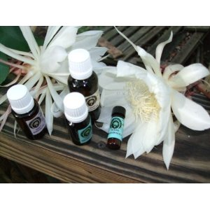 Alchemist Oils