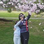cherry_blossom_rusen_melisa_16